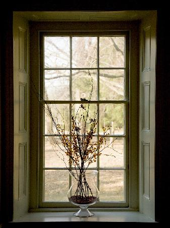 classroom window. Window-box-inside-the Classroom Window D